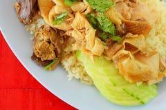 Hainanese feg rice royaltyfri bild