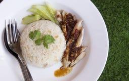 hainanese kurczaków ryż Obraz Stock