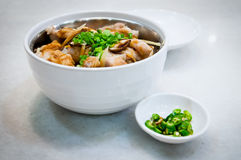 Hainanese Style Chicken Rice in Bowl Royalty Free Stock Photos