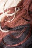 Hair. Beautiful shiny healthy style hair Stock Photo