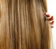 Hair_1 Fotografia Stock Libera da Diritti