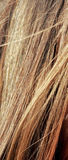 Hair abstract. Abstract shot of a womans hair stock photography