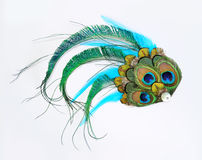 Peacock hair accessory. Hair accessory with peacock feathers isolated over white Stock Image