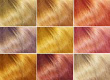 Hair background Royalty Free Stock Photos