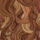 Hair background. Hair style colourful background. Vector illustration of a stylish fashionable woman hair Royalty Free Stock Image