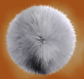 Hair ball Stock Photos