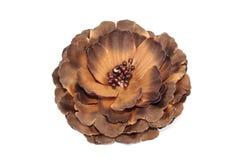 Hair band flower Stock Image