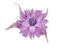 Hair band flower Stock Photo