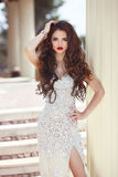 Hair. Beautiful brunette woman in fashion dress, elegant lady in Stock Photo