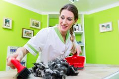 Hair being swept away at dog or pet grooming parlor Stock Photos