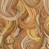 Hair blond background. Stock Photos