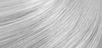 Hair Blowing Closeup Royalty Free Stock Images