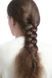 Hair in braid. Woman back with braided hair. Brown hairs tressed in long plait Stock Images