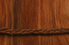 Hair Braid Horizontal Stock Photography