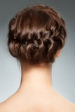 Hair Braid. Woman with brunette hair and braid hairdo. Rear view, hairstyle with tress Royalty Free Stock Images