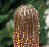 Hair Braids. A Female wearing hair braids Stock Image