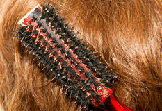 Hair brush comb Stock Photography