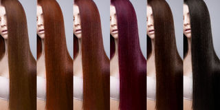 Hair collection Colors Set. Tints Royalty Free Stock Image