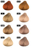 Hair Color Catalogue Stock Image