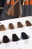 Hair color chart Royalty Free Stock Images