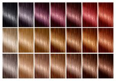 Hair color palette with a range of swatches. Tints. Color chart stock illustration