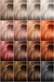 Hair color palette with a wide range of samples. Samples of dyed hair dyes. royalty free stock photography