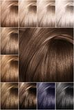 Hair color palette with a wide range of swatches. Dyed hair color samples arranged on a card in neat rows. royalty free stock photos