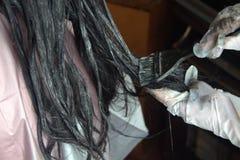 Hair coloring in a beauty salon Stock Photos