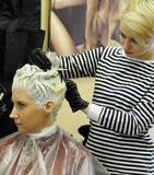 Hair coloring in the beauty salon Stock Photography