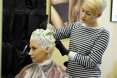 Hair coloring in the beauty salon Royalty Free Stock Images