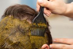 Hair coloring Royalty Free Stock Photography