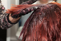 Hair Coloring Royalty Free Stock Images