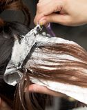 Hair coloring in the salon. Photos in the studio Stock Image