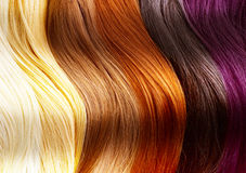 Hair Colors Palette. Close-up Image
