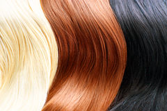 Hair colors palette. Blonde, brown and black hair colours Stock Photo
