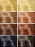 Hair colors set, tints Royalty Free Stock Image