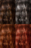 Hair colors Royalty Free Stock Images