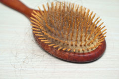 Hair in a comb Stock Photography