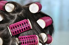 Hair curlers in the dark hair of a young woman royalty free stock photos