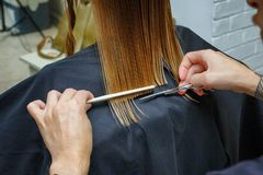 Hair cut in the hairdresser`s salon royalty free stock photos