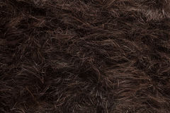 Hair cut off on the floor Royalty Free Stock Image