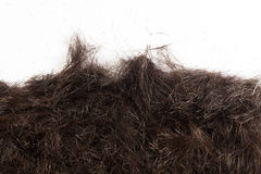Hair cut off on the floor Royalty Free Stock Photography