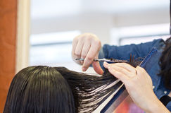 Hair cut Stock Photography