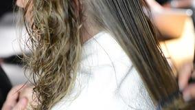 Hair cut stock video