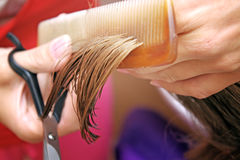 Hair cutting Stock Images