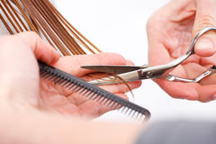Hair cutting Stock Image