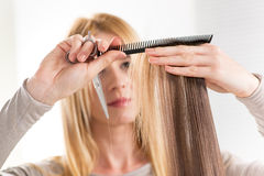 Hair Cutting Royalty Free Stock Photography