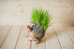 Hair cutting, hedgehog with needles of grass Stock Photography