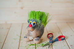 Hair cutting, hedgehog with needles of grass Stock Photo