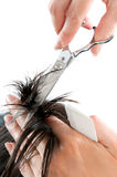 Hair cutting with scissors Royalty Free Stock Image